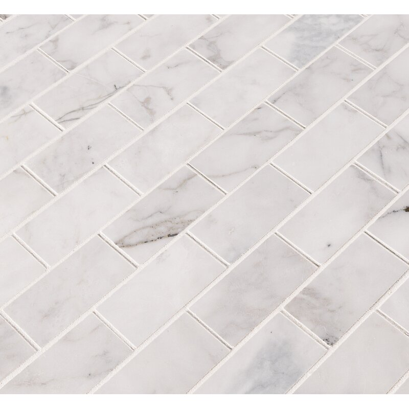 Msi Calacatta Cressa Honed 2 X 4 Marble Subway Tile In White Wayfair