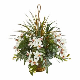 Cymbidium Orchid Artificial Hanging Basket Flowering Plant in Planter