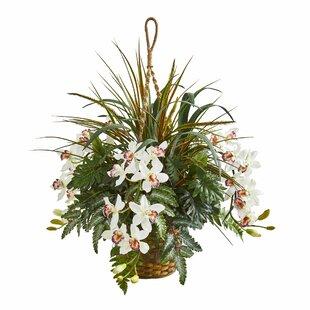 Cymbidium Orchid Artificial Hanging Planter Flowering Plant In