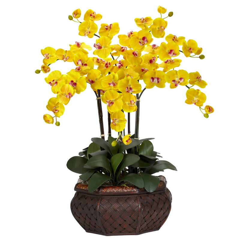 Nearly natural large phalaenopsis silk flower arrangement in yellow large phalaenopsis silk flower arrangement in yellow mightylinksfo
