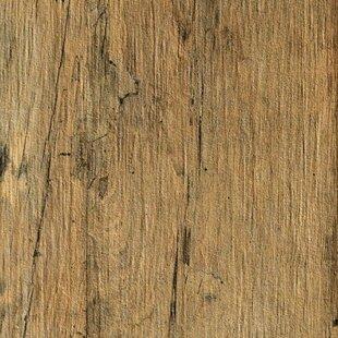 Wood Look Tile You\'ll Love | Wayfair