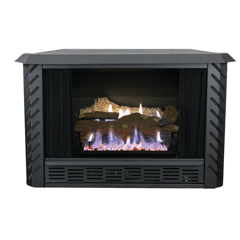 Outstanding Vent Free Natural Gas Fireplace Insert Download Free Architecture Designs Scobabritishbridgeorg