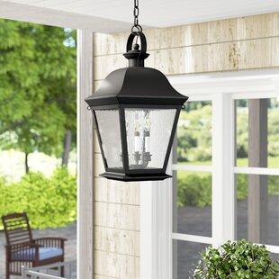 Darrah 4 Light Outdoor Hanging Lantern