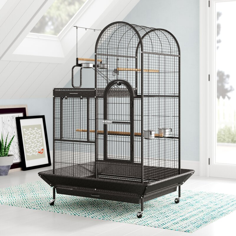 d6e3455c177d Eli Deluxe Parrot Bird Cage with Play Top