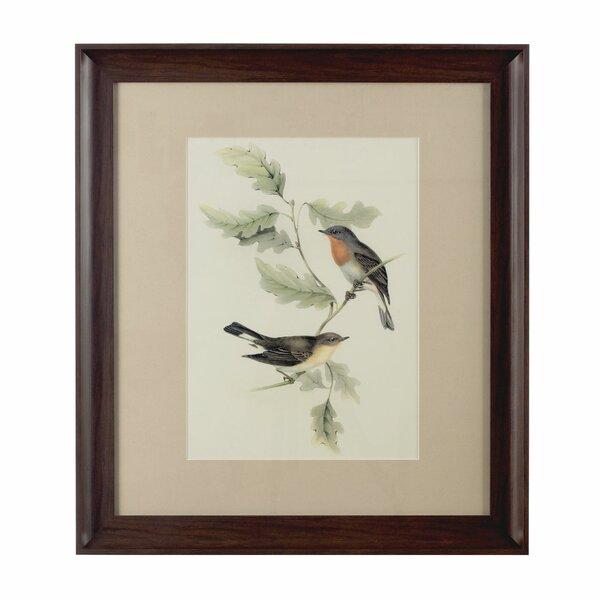 Framed Bird Pictures | Wayfair.co.uk
