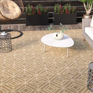 Dowler Natural Indoor Outdoor Area Rug