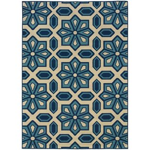 Best Marilee Blue/White Indoor/Outdoor Area Rug By Charlton Home