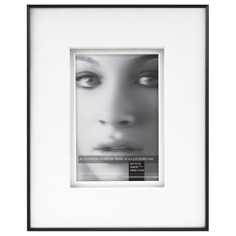 Framatic Fineline Picture Frame with Shadow Mat | Wayfair