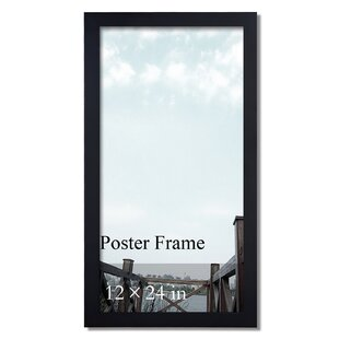 12 x 24 picture frames wayfair