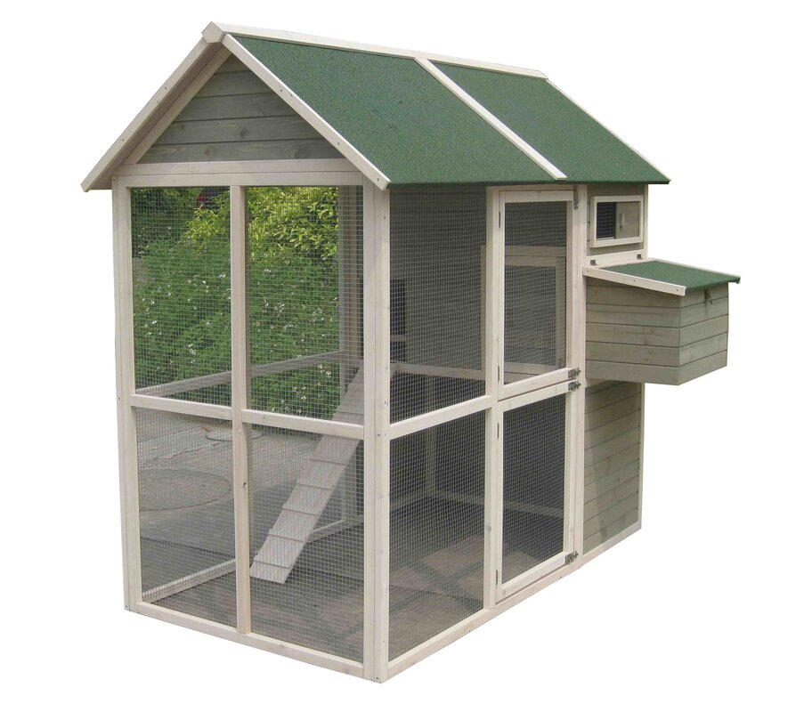 Walk In Chicken House innovation pet coops and feathers walk-in chicken coop & reviews