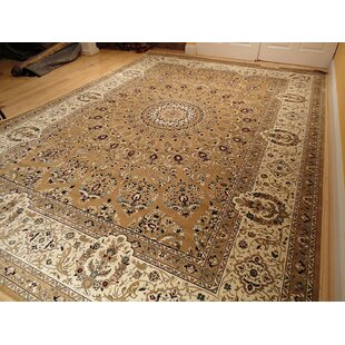 Shanelle Living Room Hand Knotted Silk Brown Area Rug