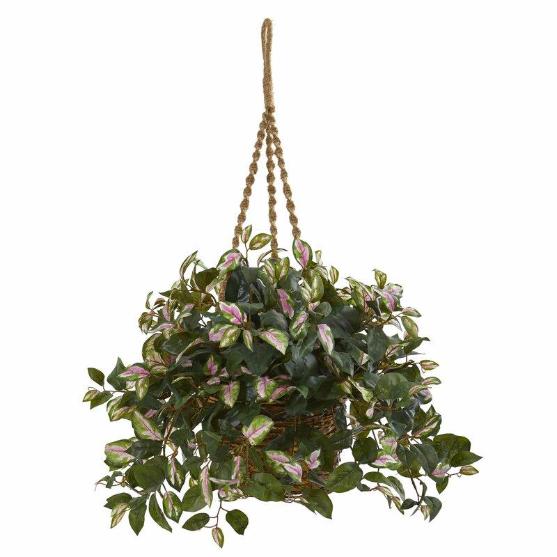 August Grove Artificial Hanging Hoya Plant Wayfair