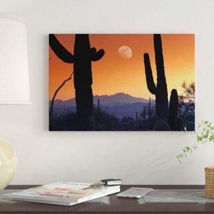 U0027Kitt Peak Under Moon From Saguaro National Monument, Arizonau0027 Photographic  Print On Canvas