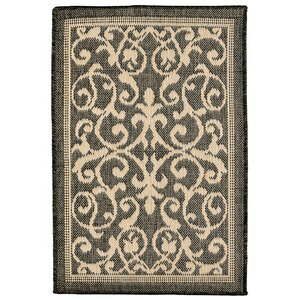 Brasstown Brown Indoor/Outdoor Area Rug