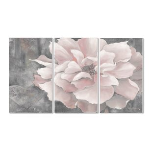 U0027Pastel Pink Peony On Grayu0027 3 Piece Graphic Art Wall Plaque Set