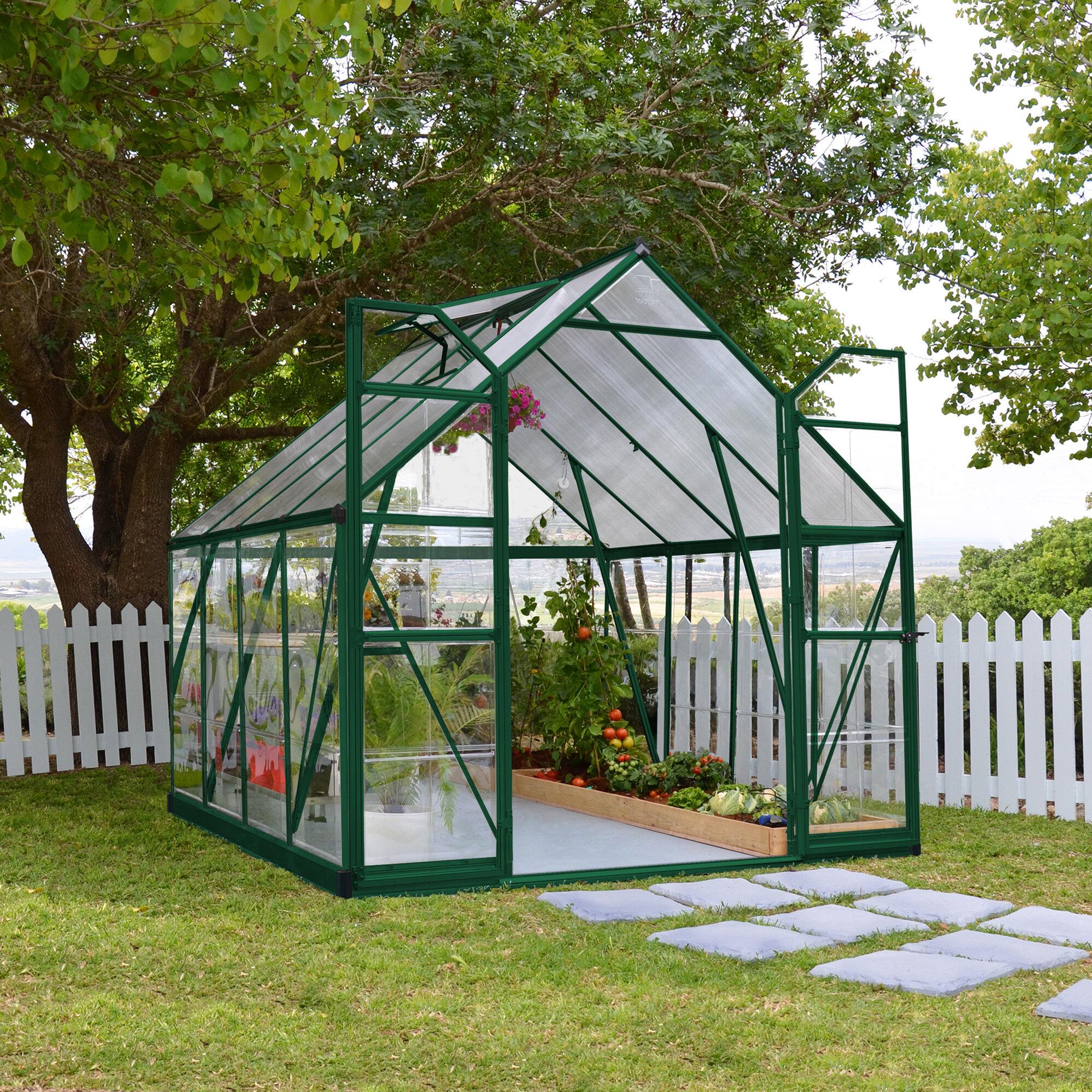 Balance 8 Ft  W x 8 Ft  D Greenhouse