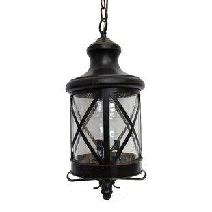 Osterman 3 Light Outdoor Hanging Lantern