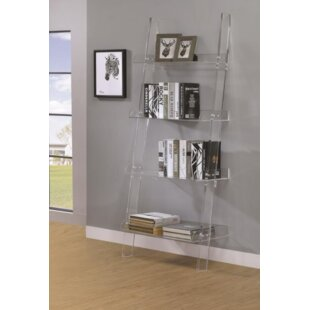 haralson ladder bookcase - Acrylic Bookshelves