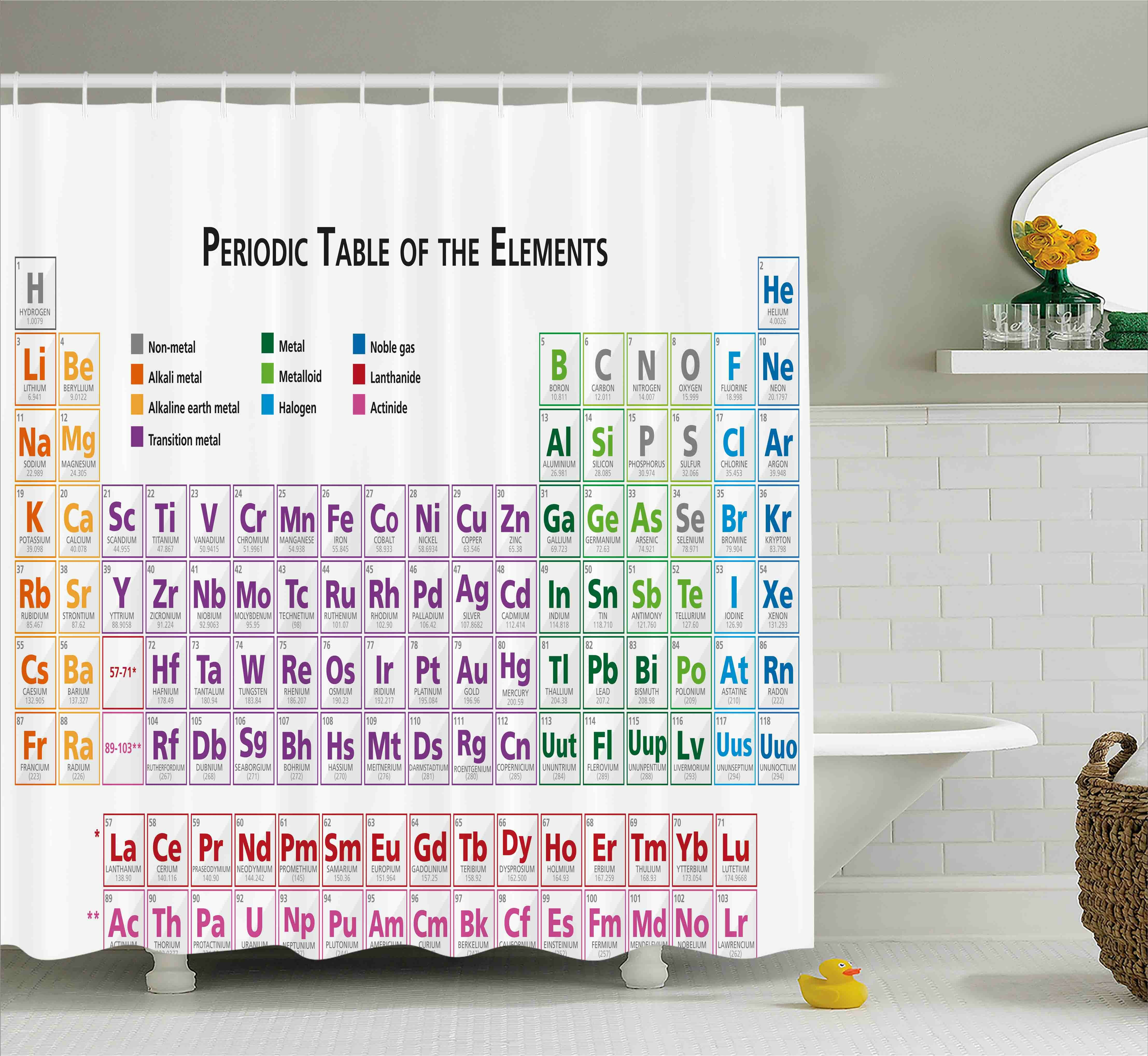 Latitude Run Kaiser Science Chemistry Primary School Students Geek Nerd Lessons Classes Smart Kids Art Print Single Shower Curtain