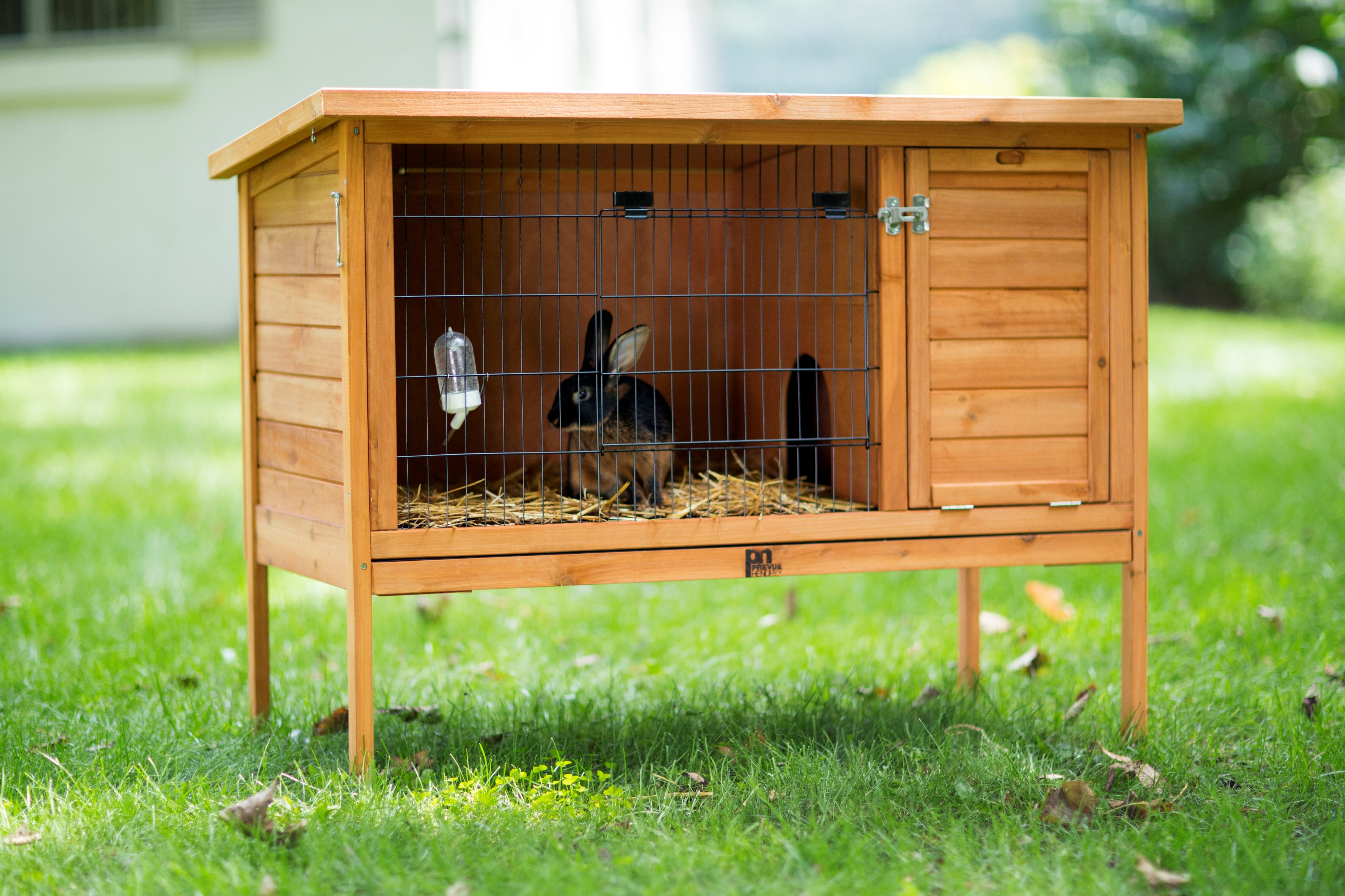 most boomer wooden bunny indoor awesome hutch hayneedle house wood beautiful intended outdoor solid for rabbit throughout george the your carter as designs well