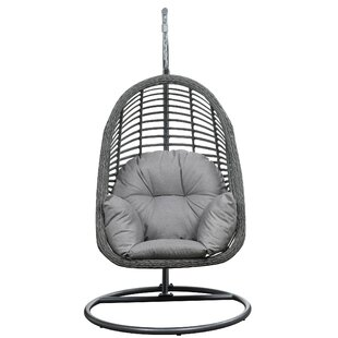 Superbe Pothier Hanging Basket Spuncrylic Swing Chair With Stand
