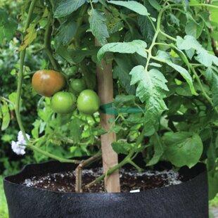 20 Gallon Planter | Wayfair