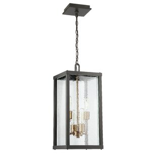Pendant Outdoor Lights Outdoor hanging lights modern contemporary designs allmodern save to idea board workwithnaturefo