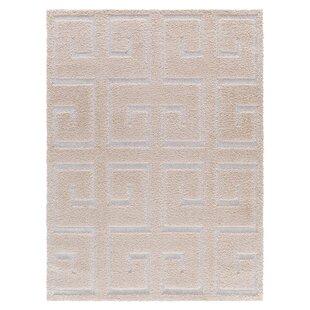 Online Reviews Ruiz Moroccan Shag Beige/White Area Rug By Mercer41