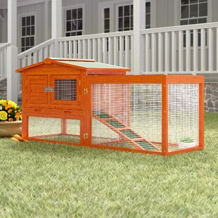 Guinea Pig Cages Hutches You Ll Love Wayfair