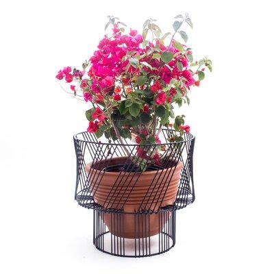 Bend Goods Plant Stand Color: Black