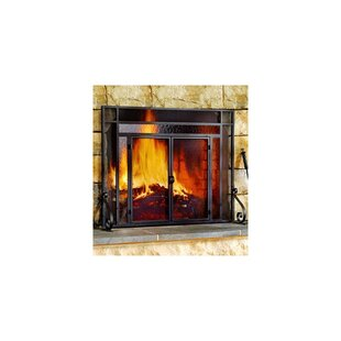 Shop Wayfair for the best mini fireplace screen. Enjoy Free Shipping on most stuff