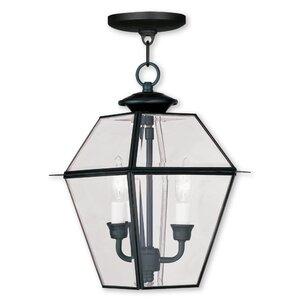 Orchard Lane 2-Light Outdoor Hanging Lantern