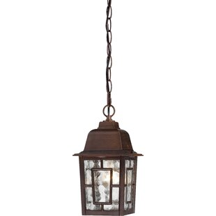 Outdoor hanging lights youll love wayfair save to idea board aloadofball Choice Image
