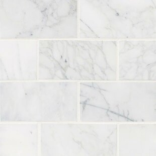 Calacatta Cressa Honed 3  x 6 Marble Subway Tile in White You ll Love Wayfair