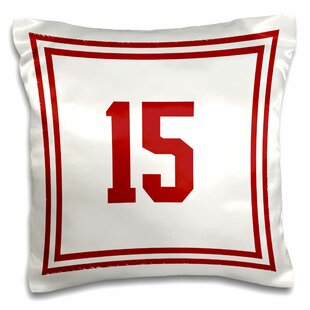 Wilmot Number 15 Outer Trim Pillow Cover