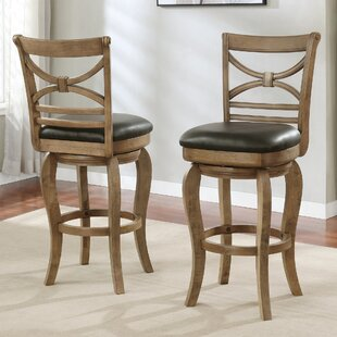 Riehl Bar & Counter Swivel Stool (Set of 2)