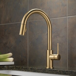 Find the Perfect Bronze Kitchen Faucets   Wayfair