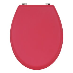 Soft Touch Toilet Seat. Soft Touch Elongated Toilet Seat Belfry Bathroom Seats  Wayfair co uk