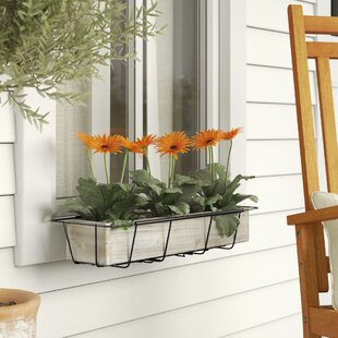 Tiana Adjustable Flower Rectangular Metal Window Box Planter & Window Boxes You\u0027ll Love | Wayfair