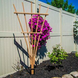Expandable Wood Fan Trellis