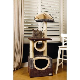 Clyde 109cm Danya Cat Tree by Archie & Oscar