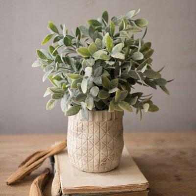 Birch Lane Faux Sage Plant In Hatched Pot Amp Reviews