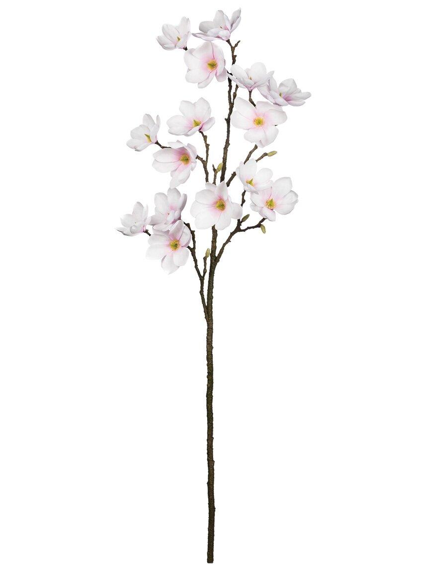 August Grove Magnolia Flower Branch Wayfair