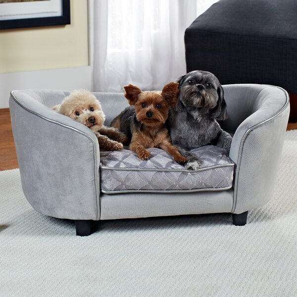 Exceptionnel Dog Furniture Youu0027ll Love | Wayfair