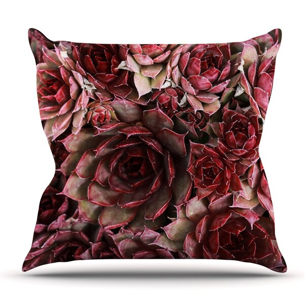 Maroon Pillows Wayfair Enchanting Maroon Decorative Pillows