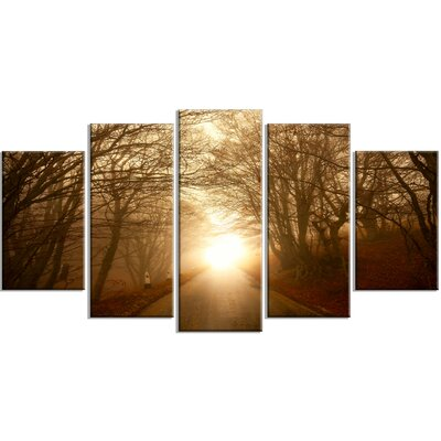 Path To Sunlight In Autumn Forest 5 Piece Wall Art On Wrapped Canvas Set