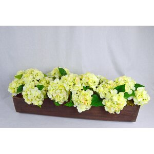 Exotic Hydrangea in Hand Carved Log