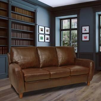 Astounding Omnia Leather Sedona Sleeper Sofa Reviews Wayfair Download Free Architecture Designs Barepgrimeyleaguecom