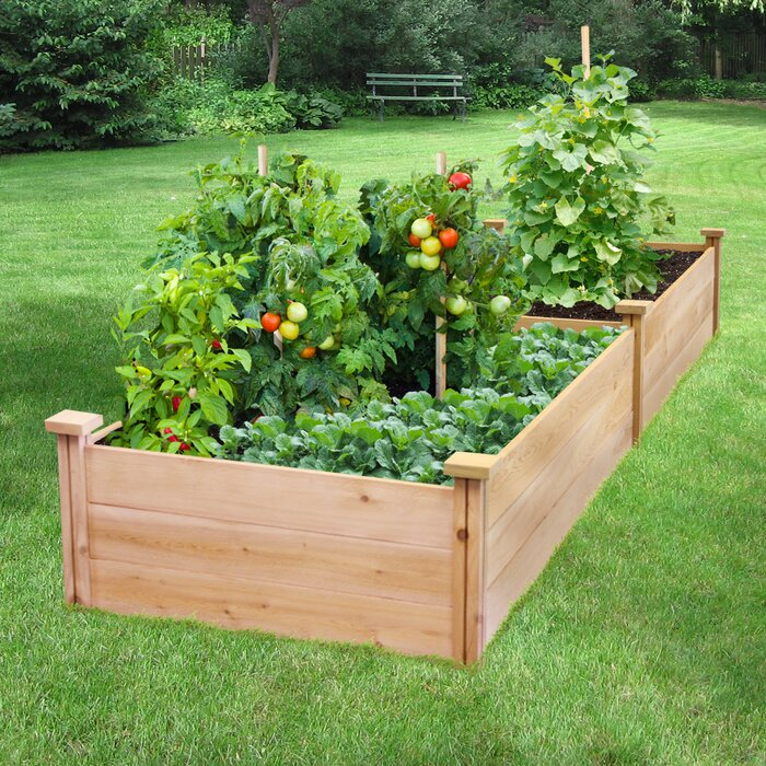 Gabler 8 ft x 2 ft Cedar Wood Raised Garden