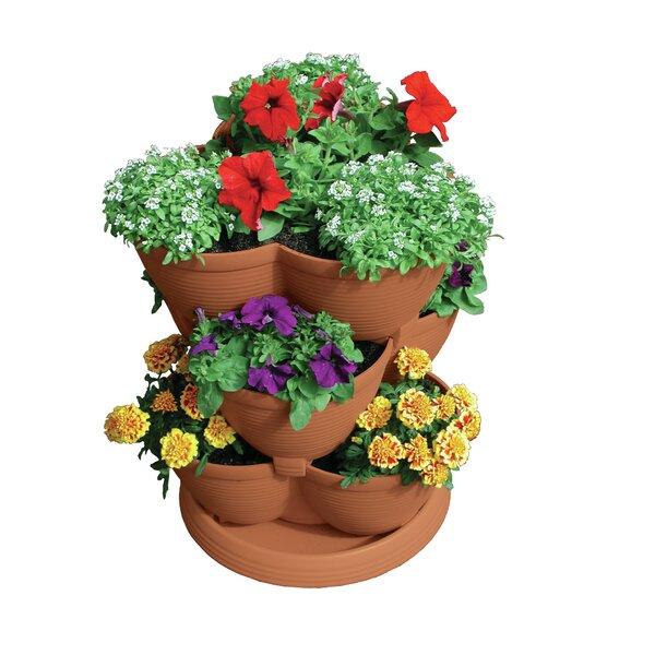 Akro Mils Lawn U0026 Garden Self Watering Plastic Pot Planter U0026 Reviews |  Wayfair